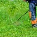 Покос травы, Бурьяна. Стрижка газона.