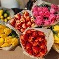 Тюльпаны оптом, готовые букеты оптом в Минске