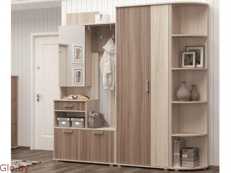 Комплекты мебели для прихожей Визит 9