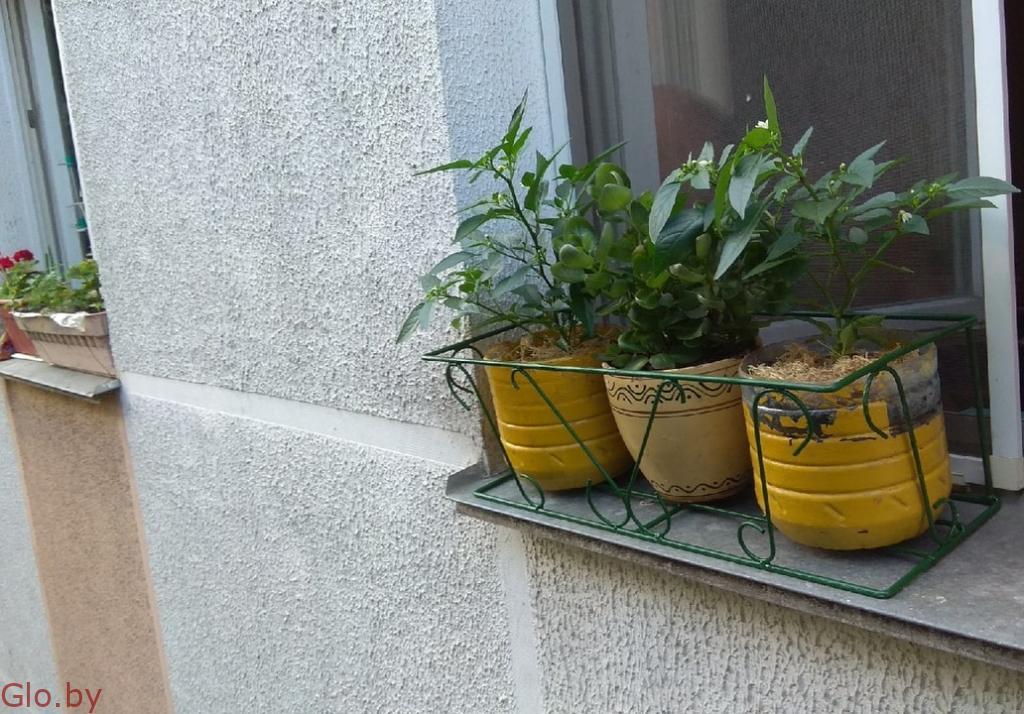 кашпо за окно , корзина цветочная