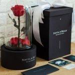 PREMIUM Роза в стеклянной колбе (28 см)